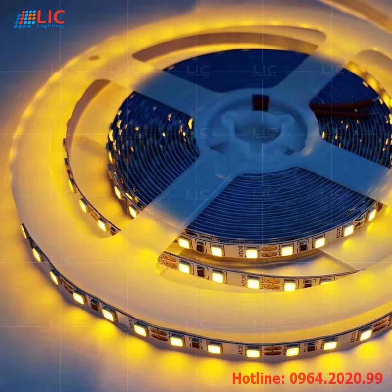 Led Dây 12V-2835 16W/168B Lic Lighting